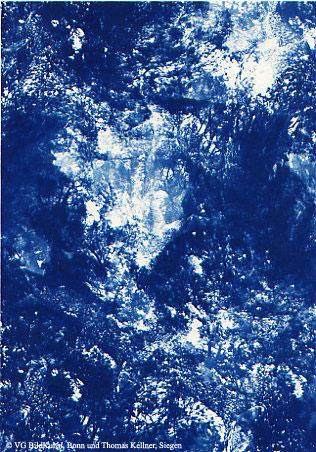 "Thomas Kellner: Pinetrees 01, 1997, Cyanotype, 16,4x23,5 cm/6,4""x9,2"", 10+3"