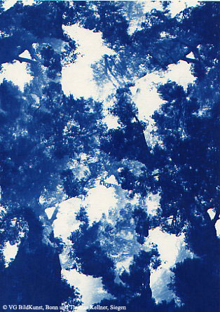"Thomas Kellner: Pinetrees 05, 1997, Cyanotype, 16,4x23,5 cm/6,4""x9,2"", 10+3"